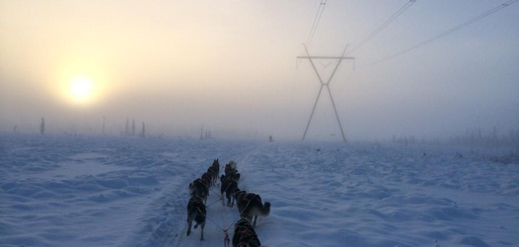 Run in the Mist