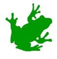 littlefrog