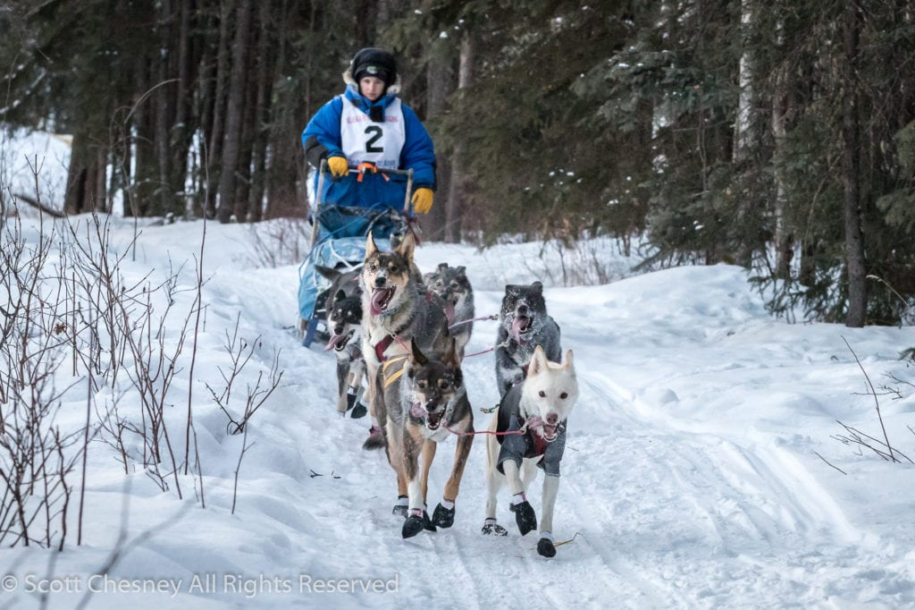Mushing in the Two Rivers 50