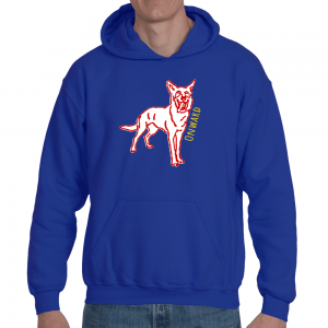 Onward Hooch Hoodie (Back and Front Print)