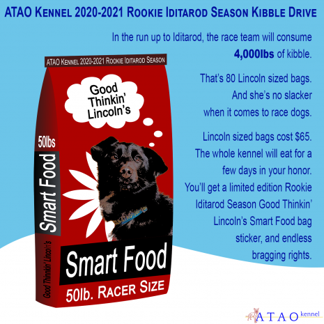 "Description: A medium red dog food bag reading ""Good Thinkin' Lincoln's Smart Food, 50lb. Racer Size"" with a picture of Lincoln sits in a snowy landscape with the ATAO Logo in one corner, with the text: ATAO Kennel 2020-2021 Rookie Iditarod Season Kibble Drive. In the run up to Iditarod, the race team will consume 4,000lbs of kibble. That's 80 Lincoln sized bags. And she's no slacker when it comes to race dogs. Lincoln sized bags cost $65. The whole kennel will eat for a few days in your honor. You'll get a limited edition Rookie Iditarod Season Good Thinkin' Lincoln's Smart Food bag sticker, and endless bragging rights."