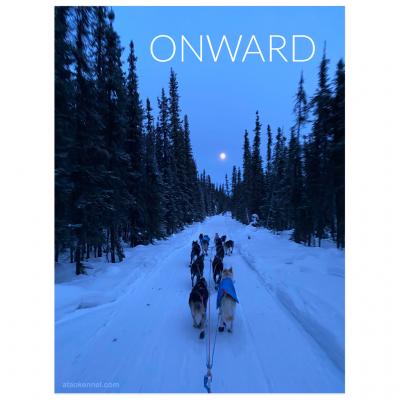 Onward Trail Poster
