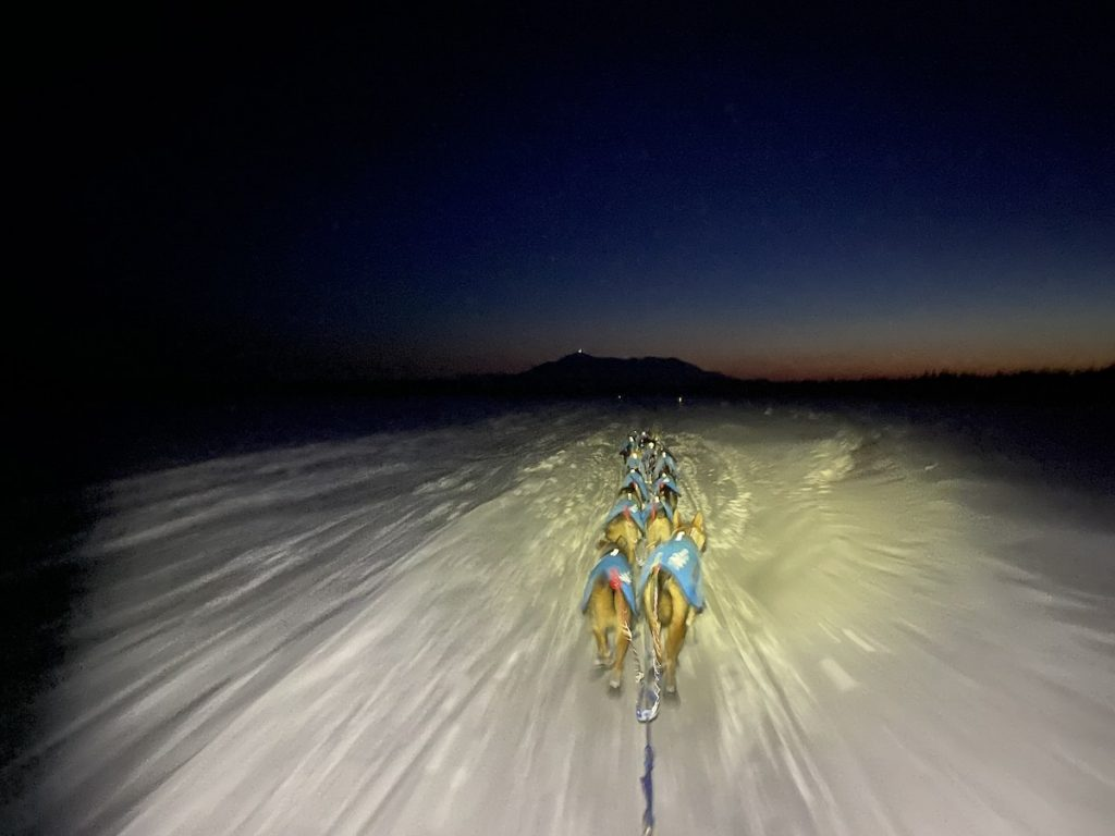 A sled dog team wearing coats mushes down a snowy trail at night, lit by a headlamp beam