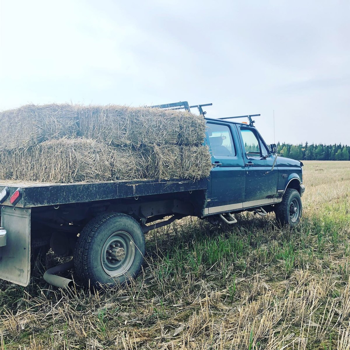 A flatbed truck holds a tall stack of straw bales